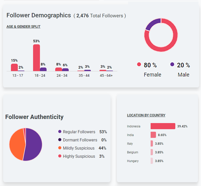 Analisa.io Sample Follower Analytics